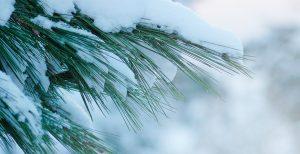 Mantener la piel brillante en invierno
