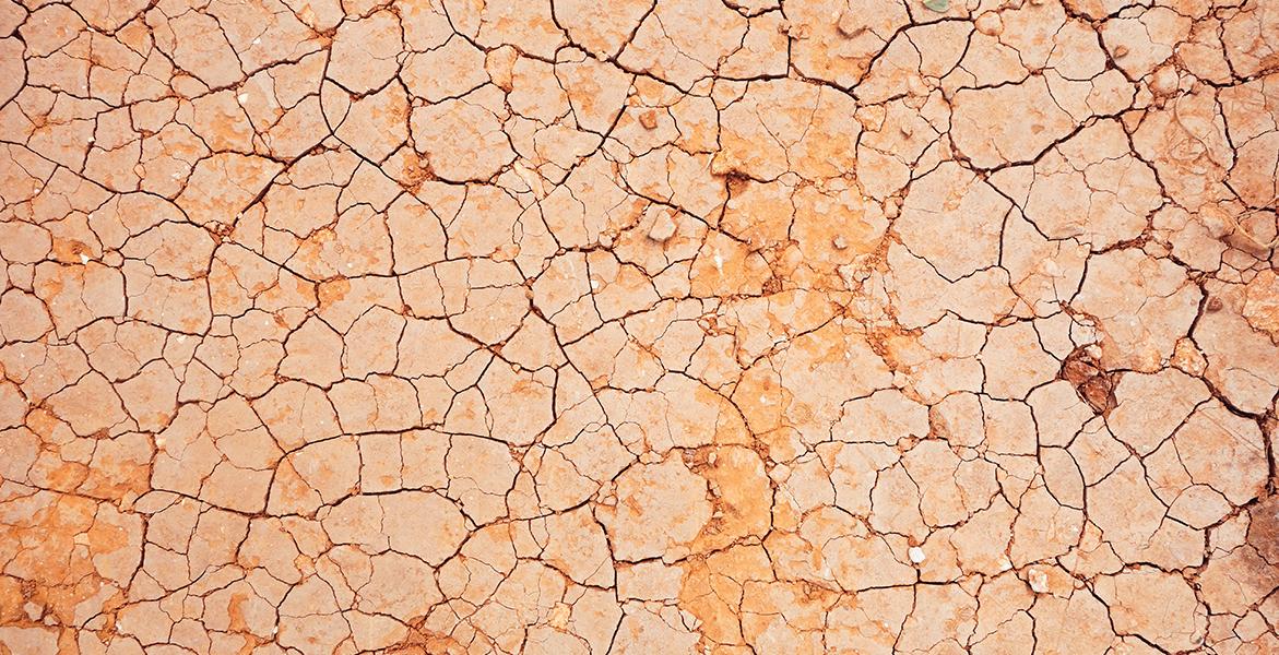 La importancia de las ceramidas para la piel seca